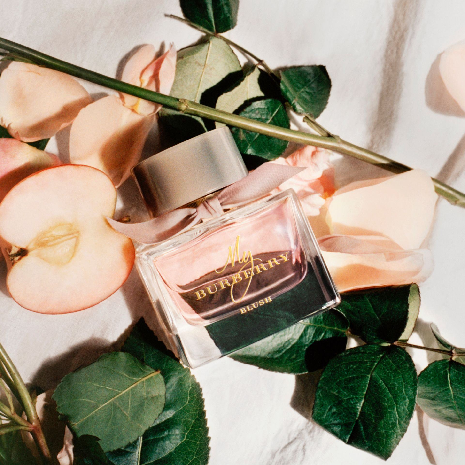 Image result for My Burberry Blush